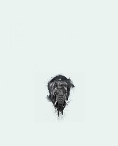 Tote Bag cotton elephant footprint by WZKdesign